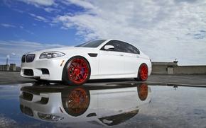 Картинка белый, отражение, BMW, лужа, БМВ, white, f10
