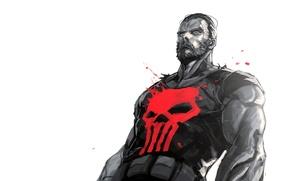 Картинка Punisher, Marvel, Comics, Марвел, The Punisher, Каратель.