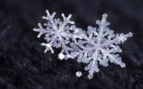 Картинка зима, снег, снежинки, кристаллы
