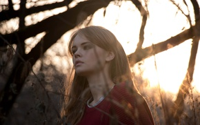 Картинка осень, лес, девушка, закат, ветки, дерево, настроение, милая, модель, красивая, свитер, Анастасия Щеглова, свет солнца
