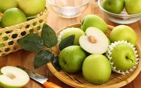 Картинка зеленый, яблоки, плоды