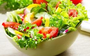 Обои петрушка, перец, помидоры, огурцы, еда, салат, лук