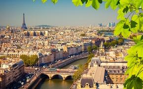 Картинка листья, ветки, река, Франция, Париж, дома, Эйфелева башня, мосты, вид сверху