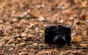 Картинка макро, фон, камера, Zenit