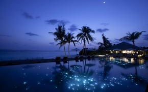 Картинка море, ночь, бассейн, Пальмы