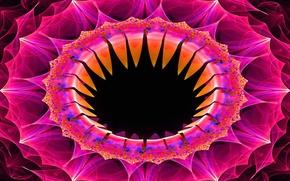 Картинка цветок, линии, краски, кольцо, объем