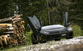 Картинка Lamborghini, Black, LP700-4, Aventador, Supercar, Forest, Trees