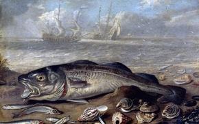Картинка корабль, картина, Ян ван Кессель Старший, натюрморт в пейзаже, Рыбы и Раковины на Берегу Моря