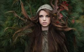 Обои листья, волосы, Emma, Jesse Herzog, ёлочки иголочки