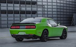 Картинка зеленый, Dodge, Challenger, автомобиль, додж, вид сзади, T/A