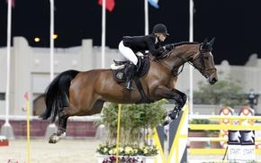 Картинка конь, спорт, лошадь, всадник, jumping, конный спорт, конкур, edwina tops-alexander, equestrian
