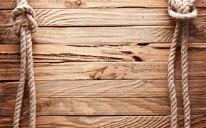 Картинка wall, line, wood, texture, brown, fence, rope, palisade, cord, halter