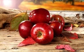 Картинка осень, листья, красные яблоки