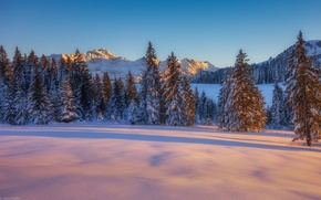 Картинка sunset, winter, mountain, snow, tree