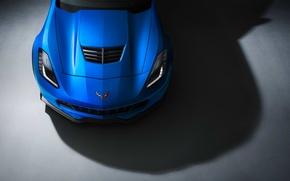 Обои chevrolet, corvette, z06, blue, color, front, ligth, studio, muscle