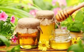 Обои цветы, стол, деревянная, сладкое, баночки, мёд, мед, желтые, розовые, ложка