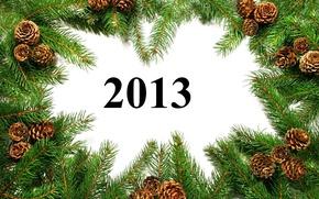 Картинка ветки, Happy New Year, шишки, год, новый, 2013