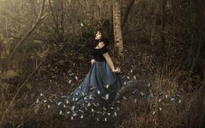 Картинка лес, девушка, бабочки, ситуация
