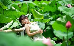 Картинка лето, девушка, цветы, настроение, сон, азиатка