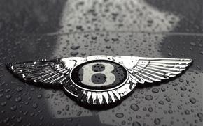 Обои черно-белая, Bentley, логотип, капли