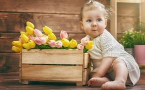 Картинка цветы, ребенок, тюльпаны, малышка, child, kid, маленькая девочка, Tulips, Little girl, Infants