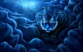 Картинка небо, ночь, тигр, art, zepher234