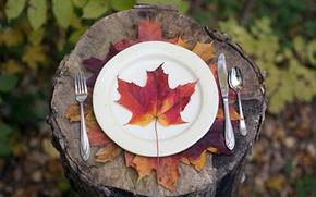 Картинка осень, лист, приборы, тарелка