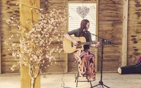 Картинка music, guitar, heart, wood, flowers, microphone, window, singer, room, plant, musician, cables, case