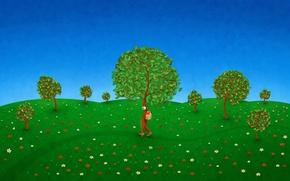 Обои деревья, цветы, тропа, скворечник