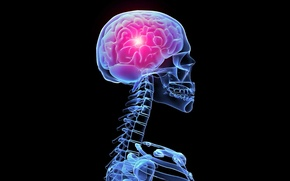 Картинка свечение, скелет, рентген, мозг, skeleton, the glow of X-rays, the brain