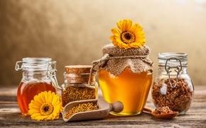 Обои цветы, прополис, сладкое, баночки, мед, желтые, банки, ложка