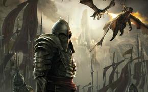 Картинка скала, крылья, драконы, доспехи, воин, шлем, флаги, рыцарь, пики, Lair