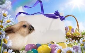 Картинка небо, яйца, пасха, Easter, Праздники