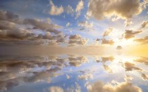 Обои дерево, солнце, небо, горизонт, облака, закат