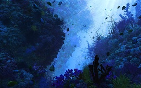 Обои водоросли, кораллы, дно, глубина, рыбки