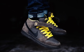 Картинка кроссовки, бренд, Nike, Pro, Leviatation, Mid, Dunk