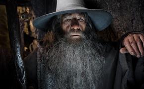 Картинка Gandalf, Ian McKellen, The Hobbit, Lord of the Rings, magician, gray beard