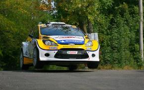 Картинка Ford, Лес, Форд, WRC, Rally, Ралли, Fiesta, Фиеста, Передок