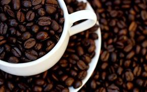 Обои белый, макро, кофе, зерна, чашка, white, коричневый, brown, cup, coffee