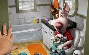 Картинка собака, ванная, хозяйка, журналы
