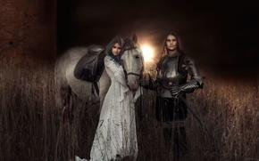 Картинка девушка, арт, рыцарь