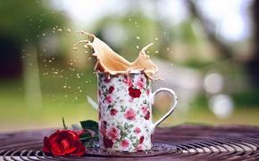 Картинка цветы, брызги, фон, widescreen, обои, настроения, кружка, чашка, wallpaper, цветочки, красная, широкоформатные, background, полноэкранные, HD …