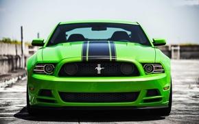 Картинка green, mustang, мустанг, зелёный, перед, ford, форд, босс, boss 302, чёрные полосы