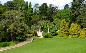 Картинка зелень, лето, пейзаж, парк