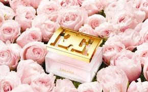 Картинка розы, духи, флакон, парфюм, ESCADA