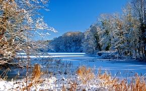 Картинка зима, небо, снег, деревья, река, русло