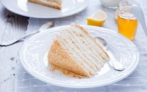 Картинка торт, кусок, медовик