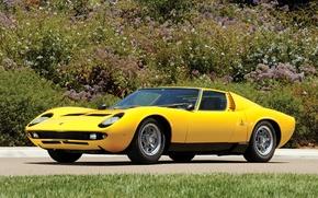 Картинка авто, Lamborghini, 1969, желтое, классика, легенда, Miura P400 S