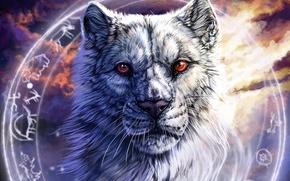 Картинка морда, волк, круг, символы, арт, красные глаза