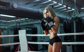 Обои training, female, boxing